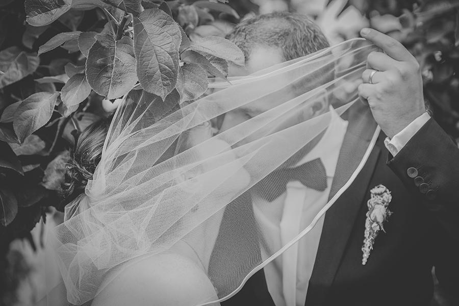 DPP 015 - Wedding